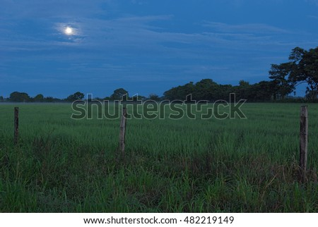 Moon setting at dawn over agricultural land in western Panama.