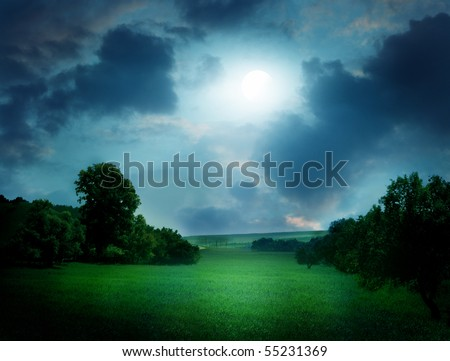 moonlight landscape - stock photo