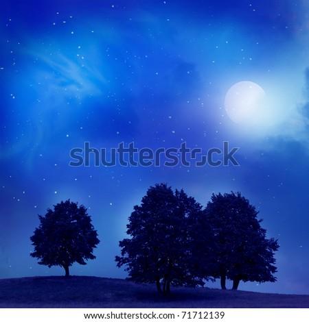 moonlight landscape - stock photo