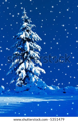 Moonlit Christmas tree on a snowy night in december - stock photo