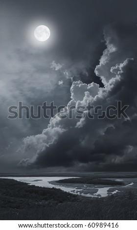 moonlit night - stock photo