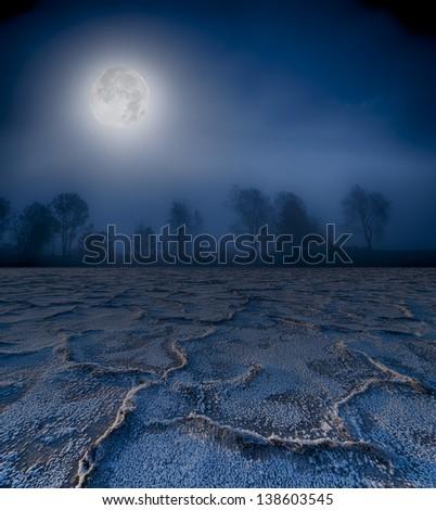 Moonrise over a foggy treeline and cracked earth. - stock photo