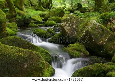 moorland stream - stock photo