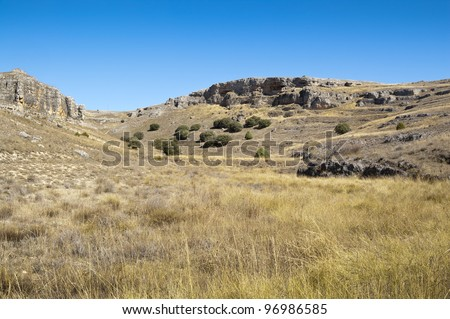 Moors of the Hoces del Rio Duraton Natural Park, Segovia Province, Spain. At the background are several specimens of Juniper (Juniperus thurifera) - stock photo