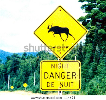Moose Crossing Sign - stock photo