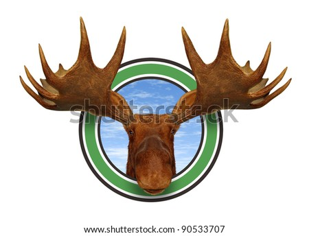Moose head front view of antlers forest icon isolated on white background representing northern fauna from the wildlife of the Canadian and American north mountains for hunting and preservation. - stock photo