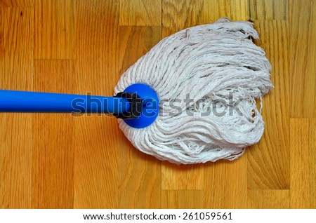 mop cleaning a wooden ground. Housecleaning concept - stock photo