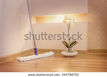 Mop cleaning wooden floor from dust - stock photo