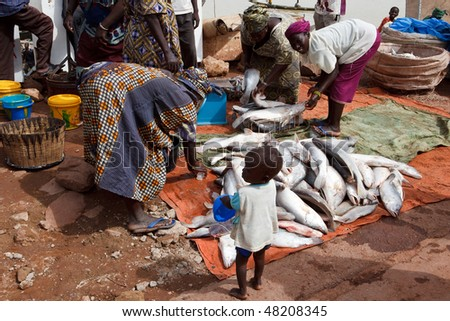 MOPTI - AUGUST 16: Women selling fish, fresh fish is sold daily at the port of Mopti and is one of the most important sources of income, August 16, 2009 in Mopti, Mali - stock photo