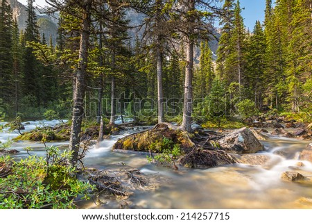 moraine lake brook in the woods with rocky mountains at banff canada  - stock photo