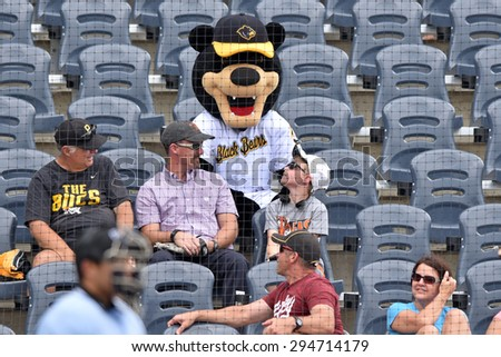 MORGANTOWN, WV - JUNE 21: New WV Black Bears mascot Cooper sits in the stands during a NY-Penn League minor league baseball game June 21, 2015 in Morgantown, WV.  - stock photo