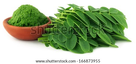 Moringa leaves with paste on a brown bowl over white background  - stock photo