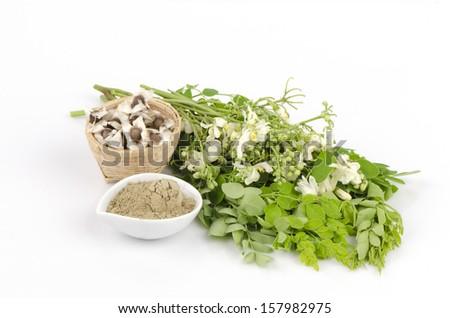 Moringa seed, moringa fresh leaves, flowers and leaves, moringa powder moringa (Moringa oleifera Lam.). - stock photo