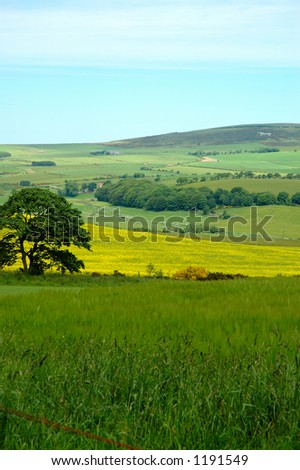 Mormond Hill and the White Horse Scotland - stock photo