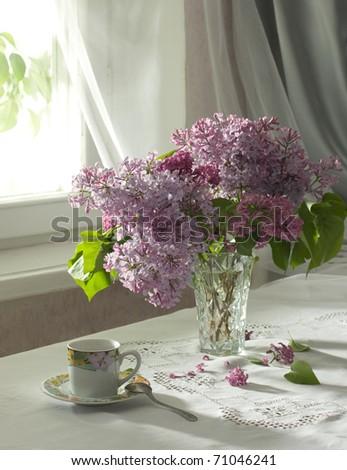morning - stock photo