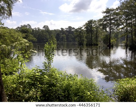 Morning at Greenfield Lake, Wilmington NC - stock photo