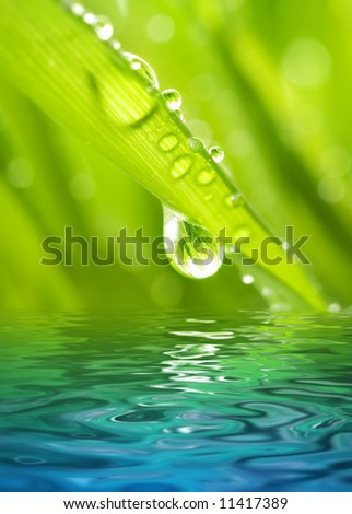 Morning dew on a green grass reflected in rendered water - stock photo