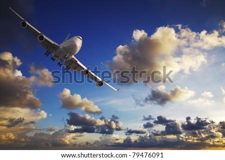 Morning flight - stock photo