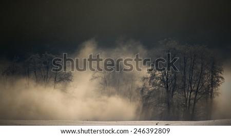 morning fog at sunrise - stock photo