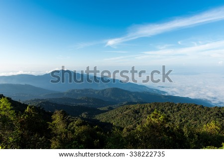 Morning fog in dense tropical rainforest, Misty mountain forest fog at doi inthanon national park of chiang mai, thailand - stock photo