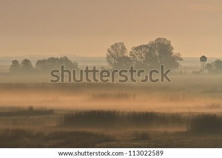 morning fog in the Danube Delta, Romania - stock photo