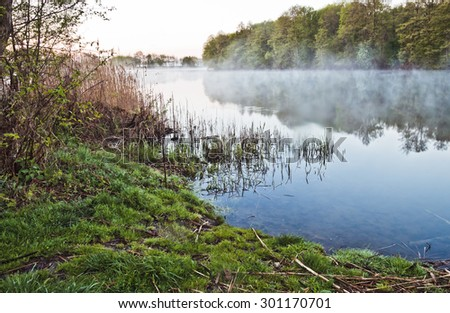 Morning fog over a pond, trees and leaves reflected in the water - stock photo
