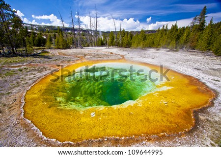 Morning Glory Pool in Yellowstone Park