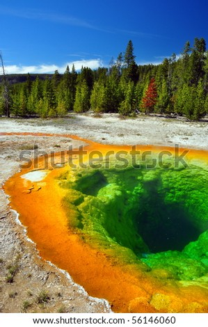 Morning Glory Pool, Yellowstone National Park