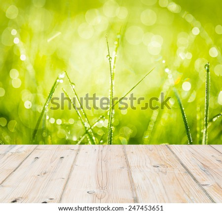 Morning grass with dew drops macro with wooden planks floor on foreground - stock photo