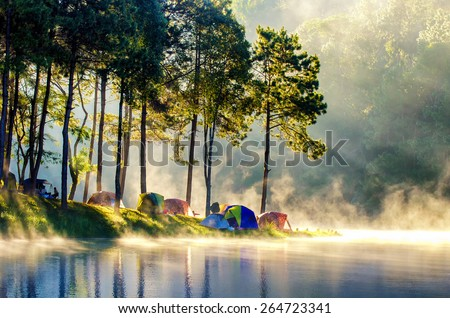 Morning in forest with camping in the mist - stock photo