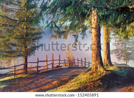 Morning in the valleys of the Carpathian rivers going to fog. The road leads from the village of Yassin Mount Petros - stock photo