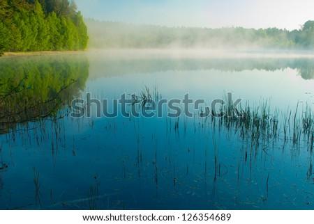 Morning lake - stock photo