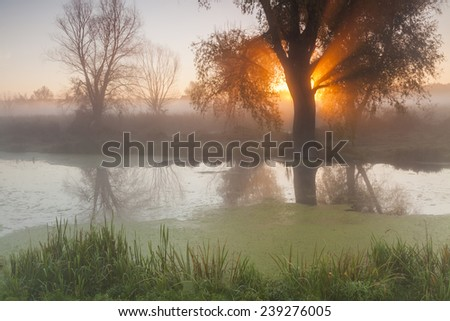 Morning landscape with fog over the river and the sun. - stock photo