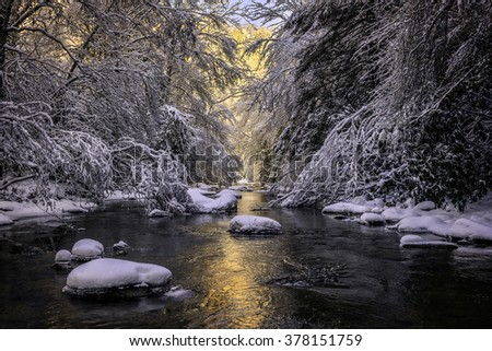 Morning light and fresh snow blanket this pristine mountain stream in the Appalachian Mountains. - stock photo