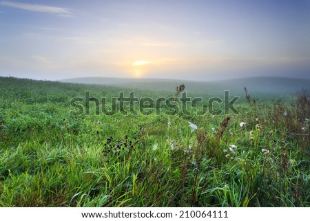 Morning light in Kashubia province in north Poland - stock photo