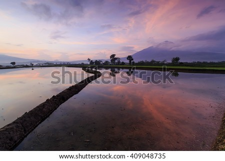 morning light on farmland and reflection in water