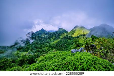 Morning Mist at Tropical Mountain Range - stock photo