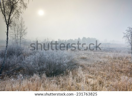 Morning mist in snow field - stock photo
