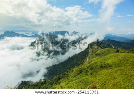 Morning mist in the valley in a clear day. - stock photo