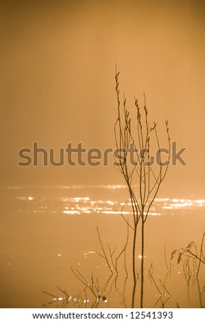 morning mist in warm orange glow on the river - stock photo