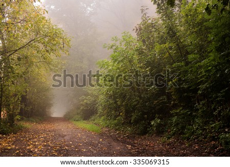 morning mist on a rural road in autumn - stock photo