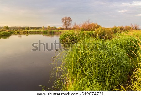 Morning on a small river on the part of Ukrainian Polesie