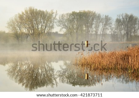 Morning Reflections on a Calm Pond by the Rice Creek North Regional Trail in Shoreview, Minnesota - stock photo