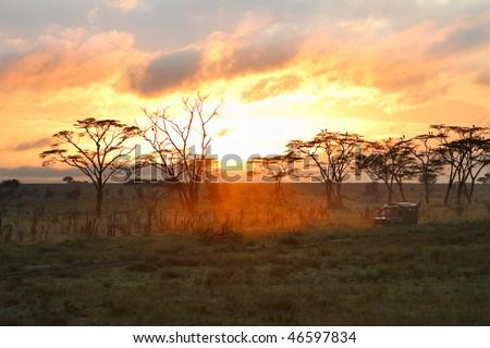 Morning safari drive. Beautiful sunrise in Serengeti national park, Tanzania - stock photo