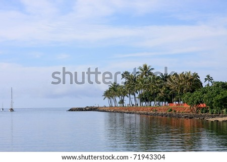 Morning scene at Ala Moana Park, Honolulu, Oahu, Hawaii
