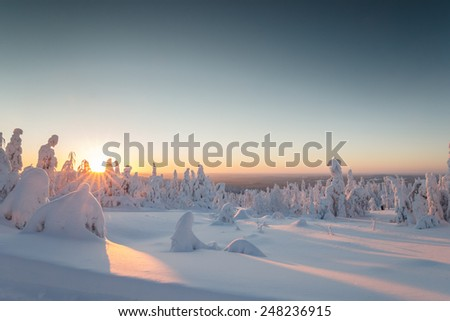 Morning sunset at Finland over a winter landscape. - stock photo