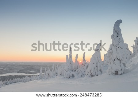 Morning sunset over lapland Finland - stock photo