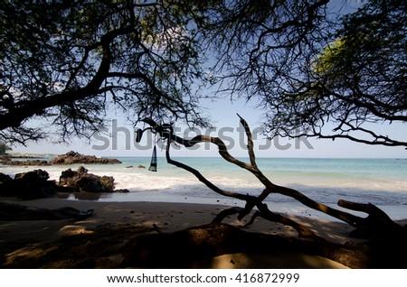 Morning swim at Puako Beach, Big Island, Hawaii - stock photo