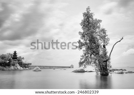 Morning view of Turi beach during low tide - stock photo