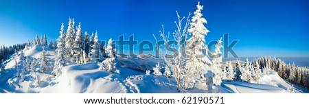 Morning winter calm mountain landscape with fir trees on slope (Carpathian Mountains, Ukraine). Four shots stitch image. - stock photo